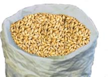 Breiss Mild Malt (2 row) Domestic 1oz